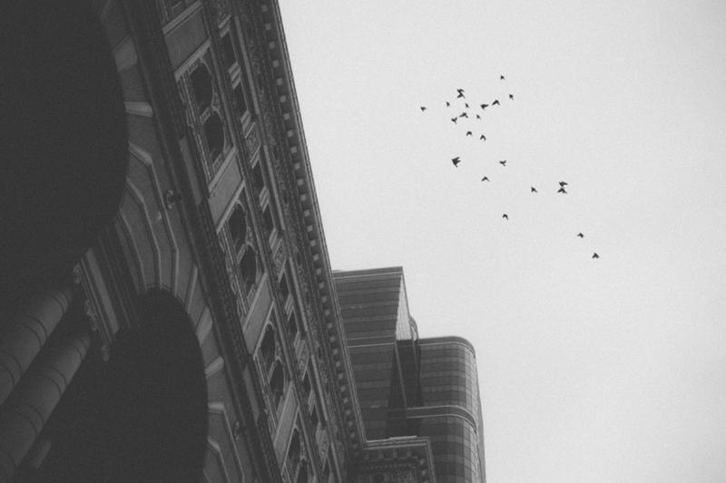 20130220-_MG_0094_blog